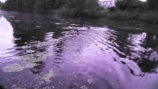 Чёрное озеро, Black lake