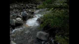 Wasooch Mountain Alberta Canada Thumbnail