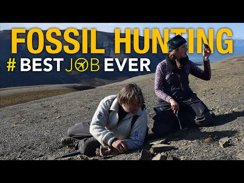 Hunting for the Bones of an Ancient Sea Monster | Best Job Ever
