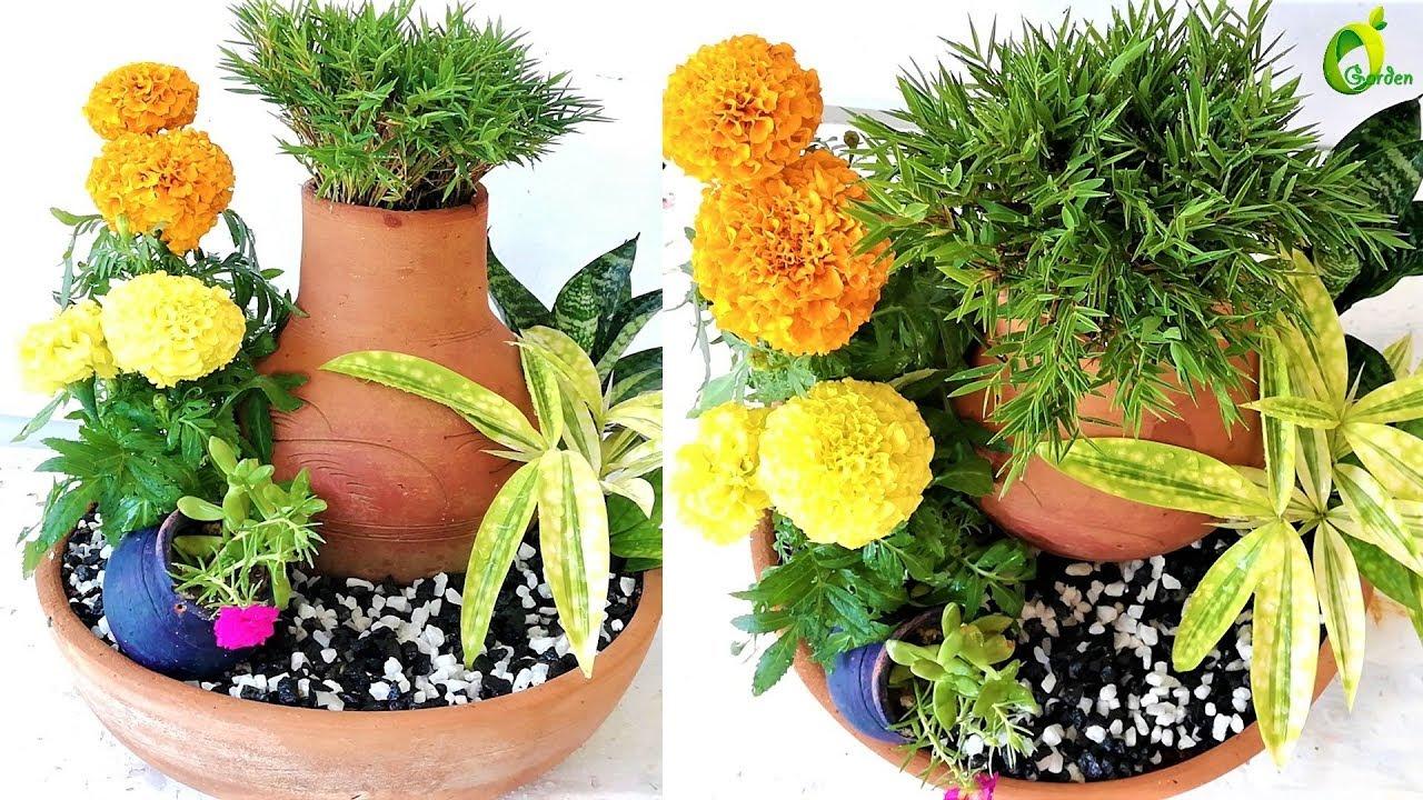 Creative Flower Pot Plants Arrangement Ideas Flower Pot Ideas