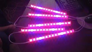 Фитолампа светодиодная  для подсветки комнатных растений.(, 2017-01-19T09:09:08.000Z)