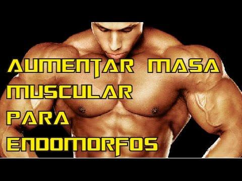 fisicoculturismo dieta para aumentar masa muscular