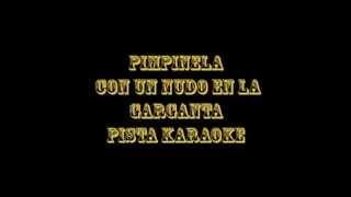 Pimpinela   Con Un Nudo En La Garganta  Pista Karaoke