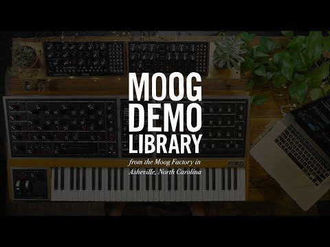 Moog One | How To Update Firmware