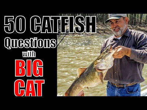 50 Catfish Questions With BIG CAT (James Patterson)