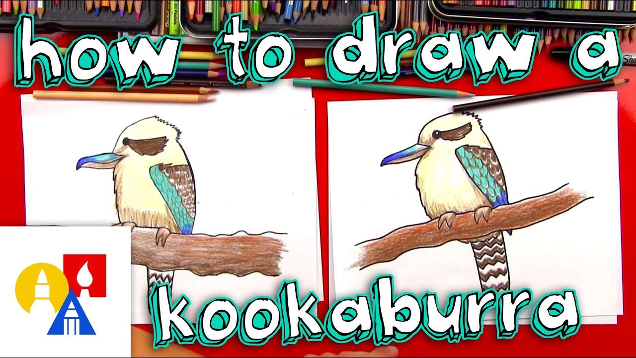 How To Draw A Kookaburra Youtube