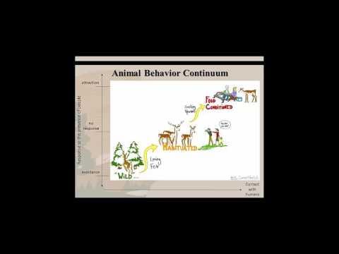 Understanding Drivers of Human and Animal Behavior to Inform Wildlife Management