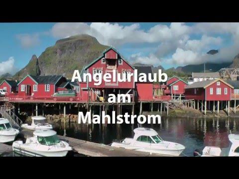 Angeln Am Mahlstrom - Å I Lofoten