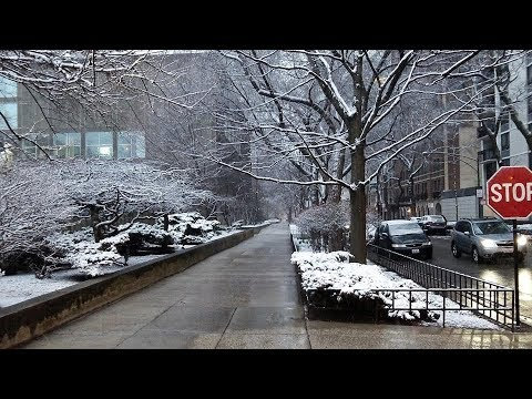 Snow in Chicago (April 9, 2018)