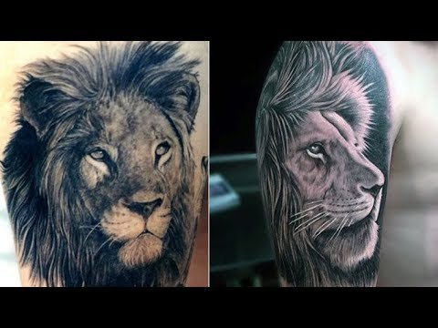 Best 5 Lion Tattoos for Men 2018