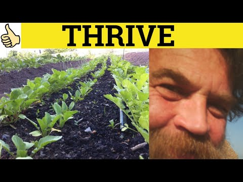 🔵 Thrive Thriving - Thrive Meaning - Thriving Examples - Thrive Definition - C2 English Voicabulary