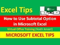 Excel Tips (Subtotal Option) (Sub total Tutorial in Excel) (Advanced Excel)