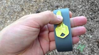 PocketBands Wristband Review