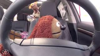 The Muppets and Toyota Highlander Get Ice Cream Toyota   YouTube Thumbnail