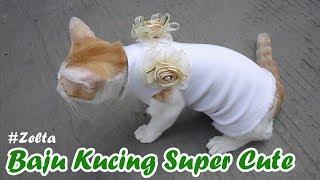 DIY - Simple Cute Blouse for Cat | Baju Kucing Lucu Mudah dibuat