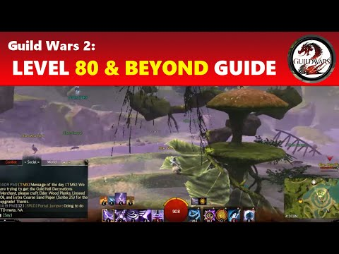 Guild Wars 2: Level 80 & Beyond Guide │ What to Do & Goals to Have