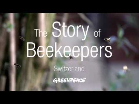 The Story of Beekeepers - Switzerland