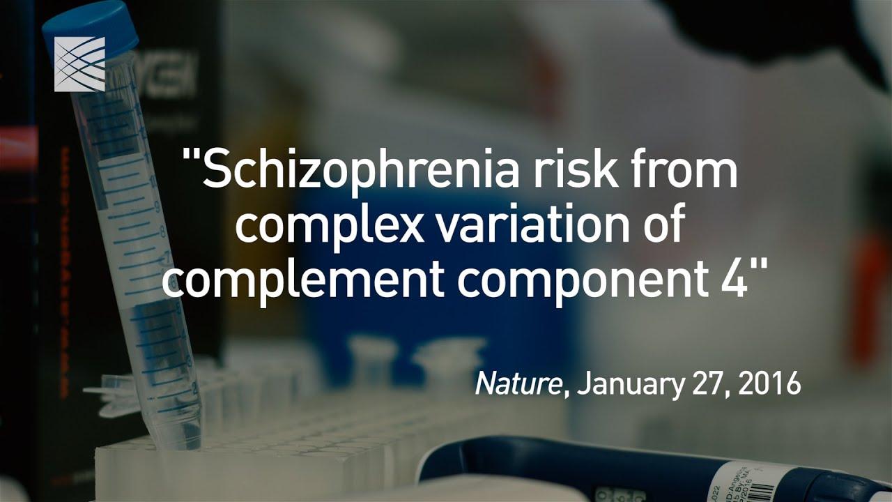 Scientists Prune Away Schizophrenia's Hidden Genetic Mechanisms