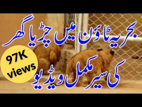 Documentary Bahria Town Wildlife, Bahria Zoo full length covered by PMS Property Management Services