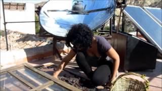 Sunseed Videonews 2013: From The Carob Tree To The Carob Cake