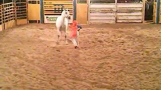 Vídeo para crianças Palhaço Pipoquinha e o Cavalo Branco