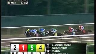 2012 Champagne Stakes - Shanghai Bobby