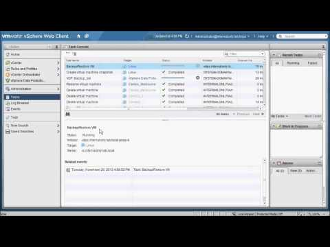 VMware VDPA Backup and Restore with Data Domain