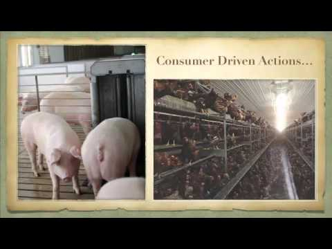 Gary Cooper - When Real People Open the Barn Doors to Real Farms