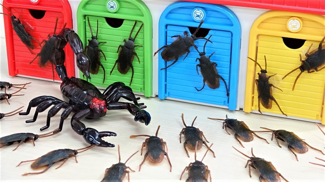 Tayo the little bus Giant Scorpion Attack Thomas Station Crocodile Toy Monster Insect Story