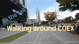 Walking around COEX in the fal…