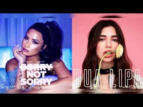 Sorry Not Sorry X Last Dance | Demi Lovato...