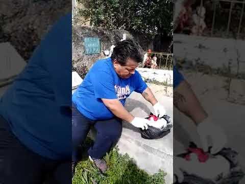 Trabajos. Encontrados En. Juárez N. L