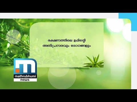 Ayur Jeevanam Excess Salt In Food And Diseases| Mathrubhumi News