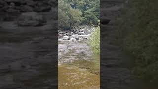 가평 화악산계곡 무료 물놀이 장소ㅡ왕소나무펜션 근방