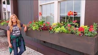 Our NEW, VIBRANT Window Box Recipe for 2020 | Container Gardening | Full Sun/Part Sun // Garden Farm