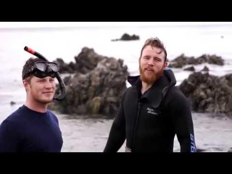 Plunge Free Dive PledgeMe Campaign