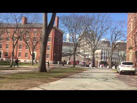Walk through Harvard University