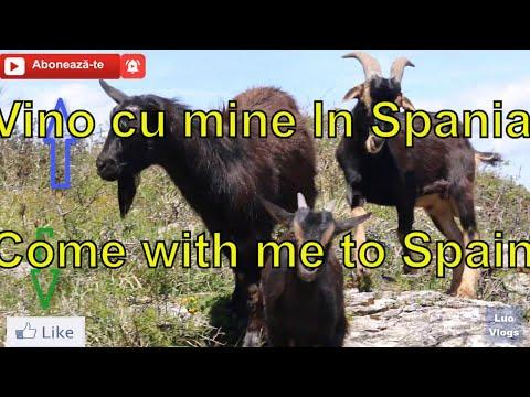 Azi asta am mancat in oras pe 5 Euro Spania -Merita? 😂😂😂 from YouTube · Duration:  1 minutes 19 seconds