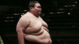 Le plus lourd sumotori : Orora (271kg)