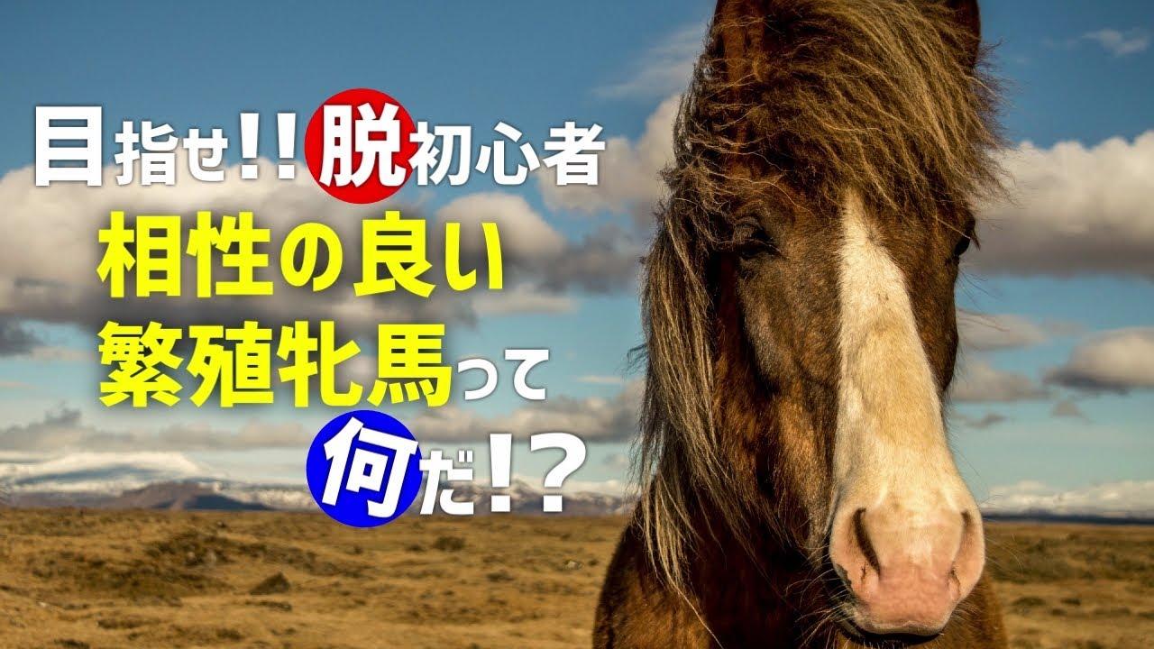 牝馬 繁殖