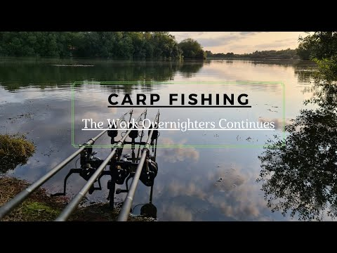CARP FISHING   Syndicate Diaries    The Work Nights Continue!