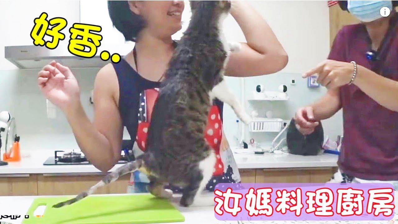 新汝媽料理廚房#14 MiMi醬站起來搶菜XD芹菜肉絲炒豆干! 20200805