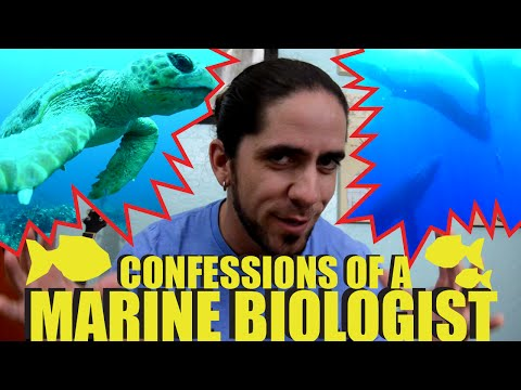 Confessions of a Marine Biologist – OFFICIAL Trailer | SciAll.org