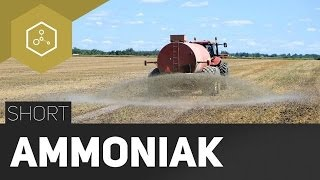 Ammoniak - Was ist das? - #TheSimpleShort