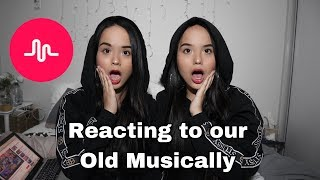 theylovearii musical.ly