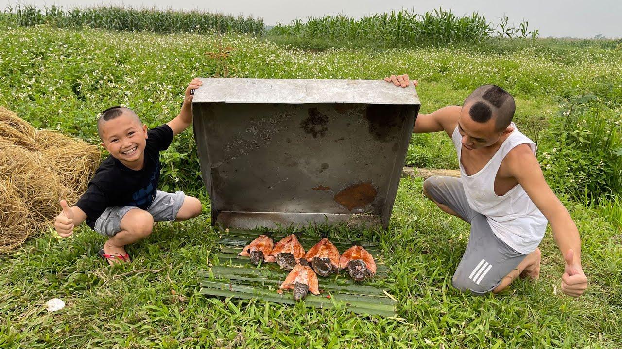 Cá Lóc Úp Tôn - Đi Đào Lươn Bắt Được Cả Ổ Cá Lóc Cực Khủng