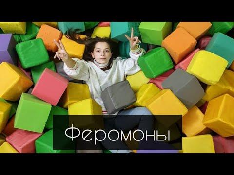 Клип Nepeta Страшилки под песню~Ферамоны