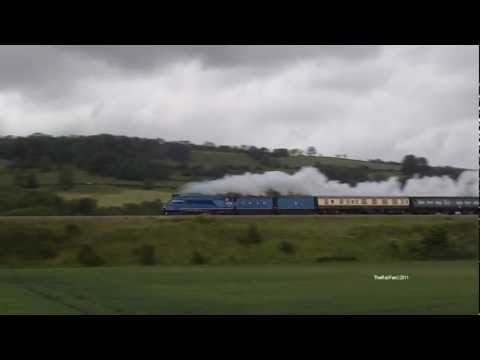 (HD)60019 as 4492 Dominion of New Zealand