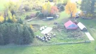 Drone fall farm tour. Plus, cows react to drone