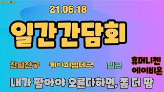 6월18일 일간간담회 - 텔콘 케이피엠테크 한일진공 휴머니젠 에이비온 - Korean Stock Story_honeybee